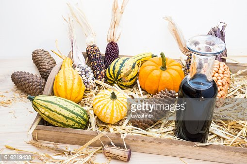Autumn mood with decorative pumpkins : Bildbanksbilder