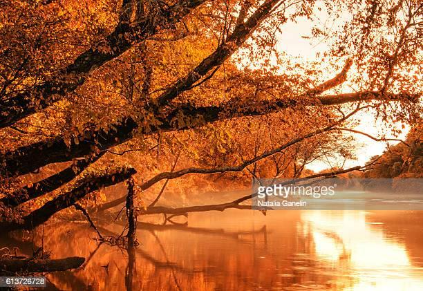 Autumn morning on the Chattahoochee river