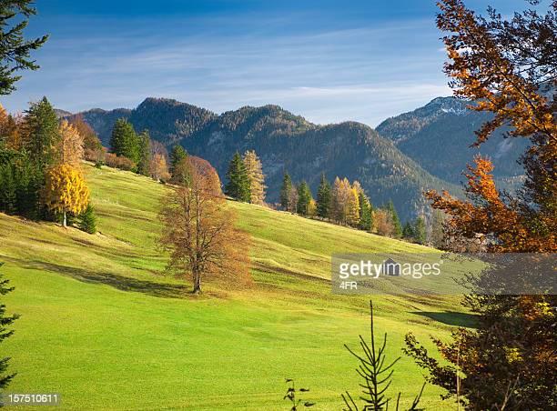 Herbst Bergpanorama-österreichischen Alpen (XXXL