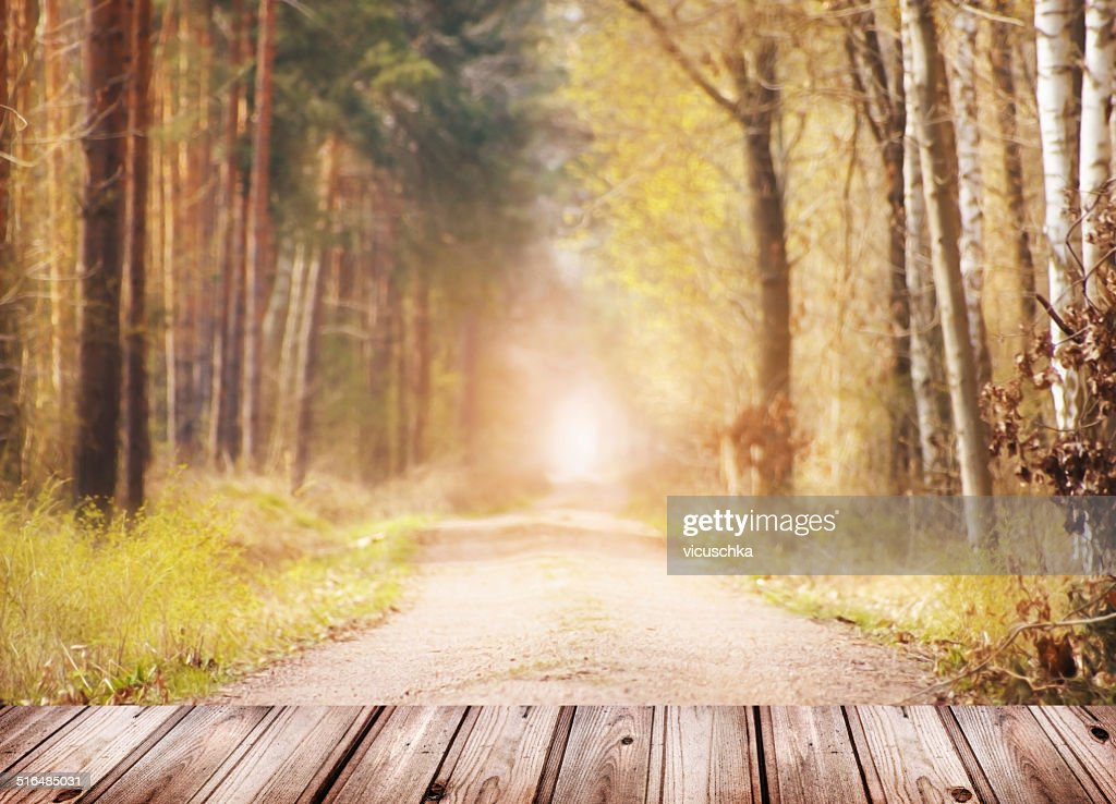 Autumn nature background with wooden terrace and forest for Terrace nature
