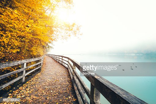 Autumn Path Along The Lake