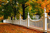 A picket Fence is surrounded by fall color in Vermont
