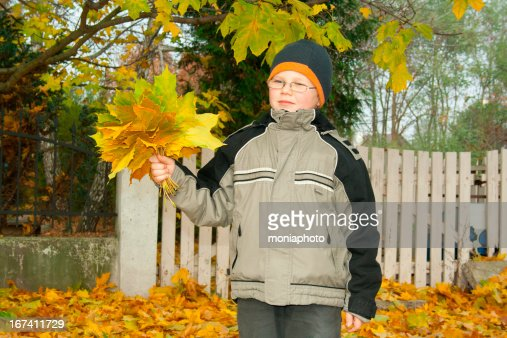 Autumn : Stockfoto