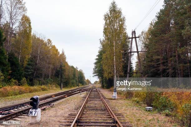 Autumn railway landscape near Okatovo station