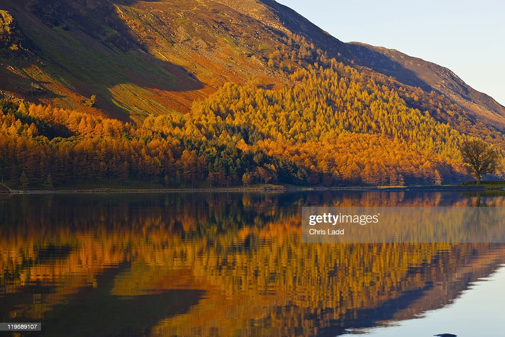 Autumn reflection on Lake Buttermere