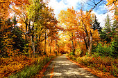 Autumn road in the White Mountains National Forest region of New Hampshire