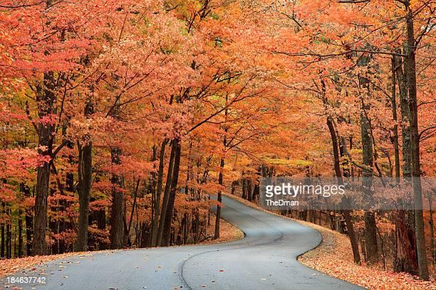 Herbst Road
