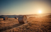 Autumn Scene at tuscany with bale of straws