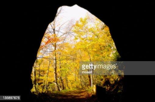 Autumn scenery from tunnel : Stock Photo