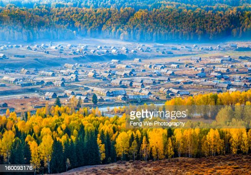 Autumn Scenery, Hemu Village, Xinjiang China : Stock Photo