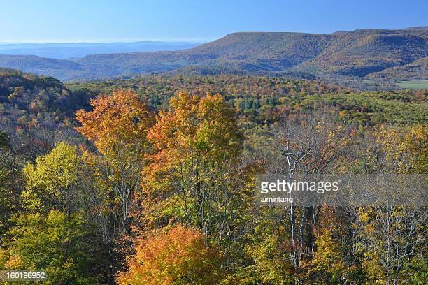 Autumn Scenery in West Virginia