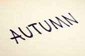 Autumn sign word on clean yellow paper