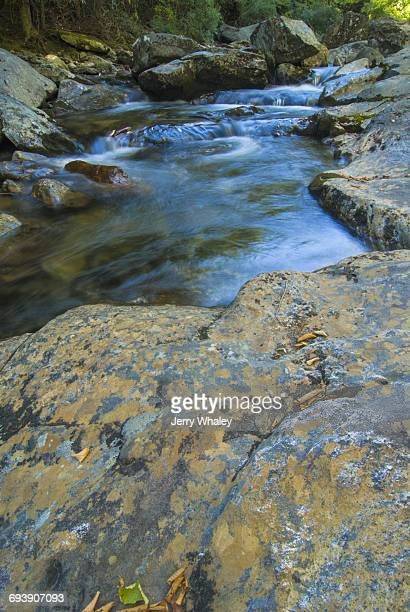 Autumn, Stream, Pisgah National Forest