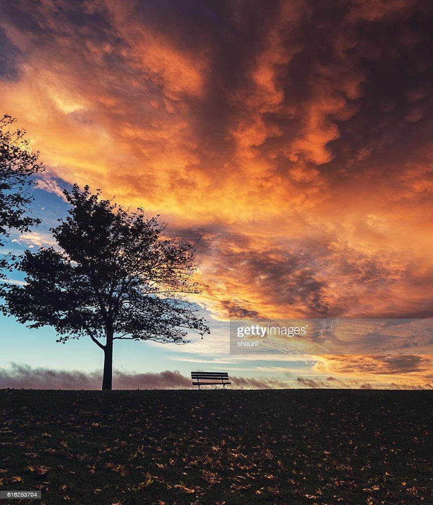 Autumn Sunset : Stock Photo