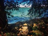 Lake lakeshore background autumn landscape nature