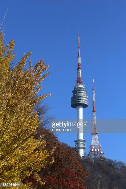 Autumn Tower in Central Seoul