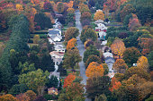 Autumn trees among suburban neighborhood