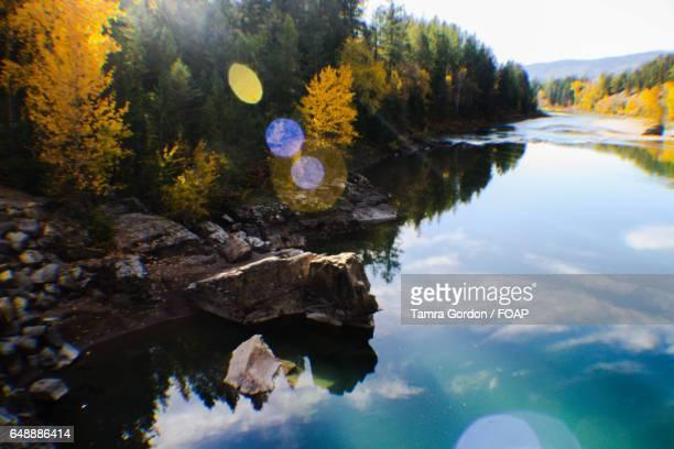 Autumn trees reflecting on lake