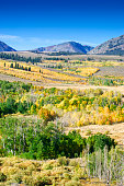 View of the Eastern Sierra Nevada, with aspen trees whose leaves have changed to autumn yellow and red colors.