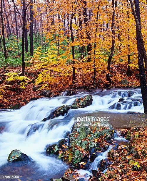 Autumn waterfall in New York (P)