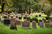 Tombstones in fall.