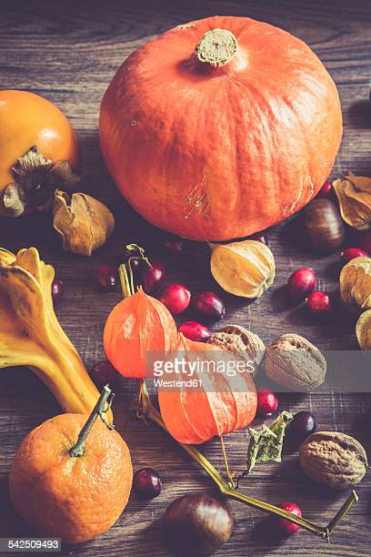 Autumnal fruits and vegetables on dark wood