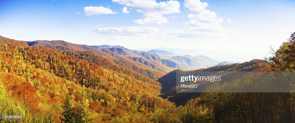 Autumnal Landscape, Great Smoky Mountains