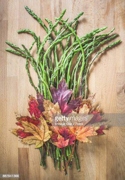Autumnal Leaves and Wild Asparagus