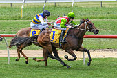 AUS: Warrnambool Racing Club Race Meeting