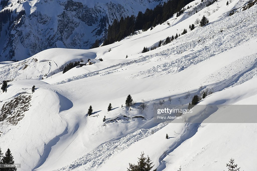 Avalanche slope, Austria : Stock Photo