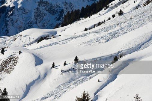 Avalanche slope, Austria : Stock Photo