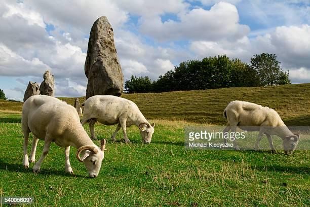 Avebury Neolithic Stone Circle