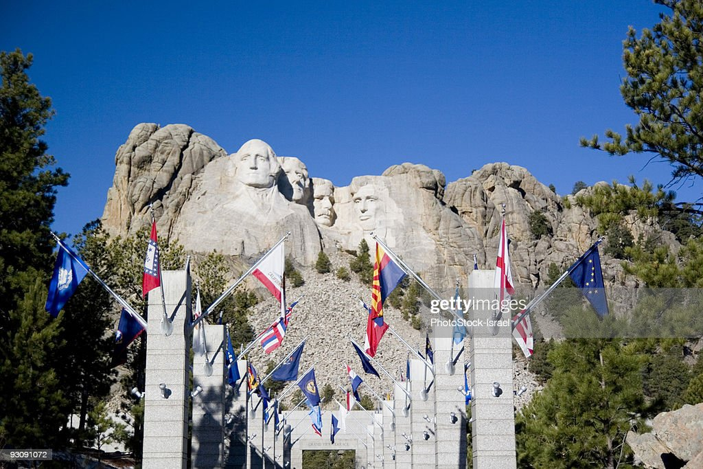 Avenue of flags  : Stock Photo
