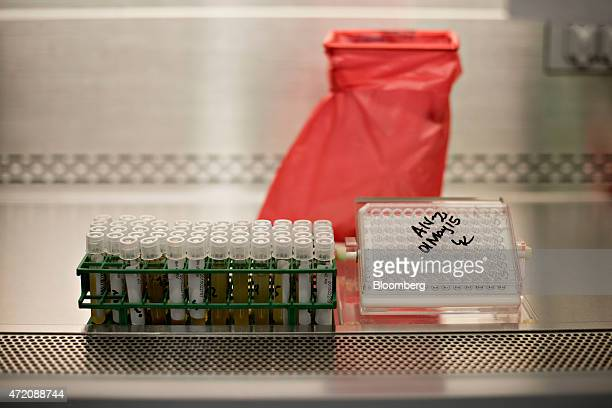 Avian Influenza test samples sit in a safety cabinet during testing in the realtime analytical diagnostics lab at the Iowa State University College...
