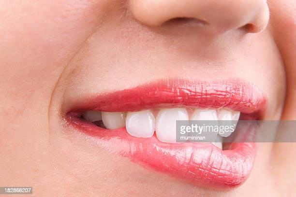 avid Lippen