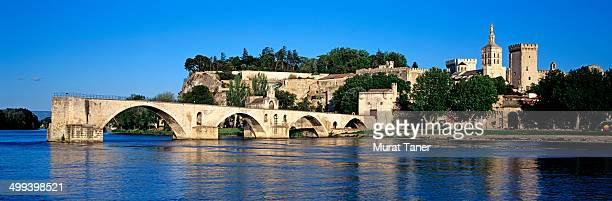 Avignon Bridge and Papal Palace