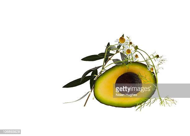 Avocado, Chamomile, and olive branch