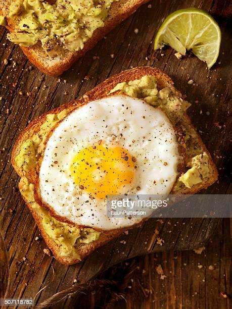 Pain grillé avec un avocat, œuf frit