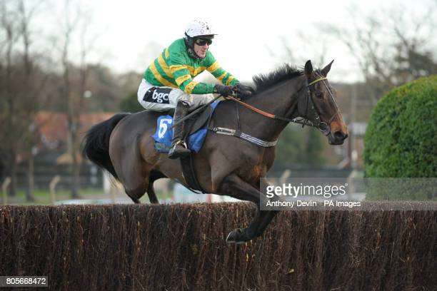 Award Winner ridden by Tony McCpy in the Sign Up Bonus At betinternetcom Novices' Handicap Chase during Tingle Creek Friday at Sandown Racecourse