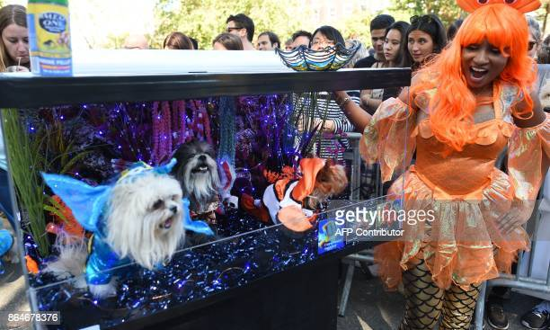 Awoman poses with her dog in costume during the 27th Annual Tompkins Square Halloween Dog Parade in Tompkins Square Park in New York on October 21...