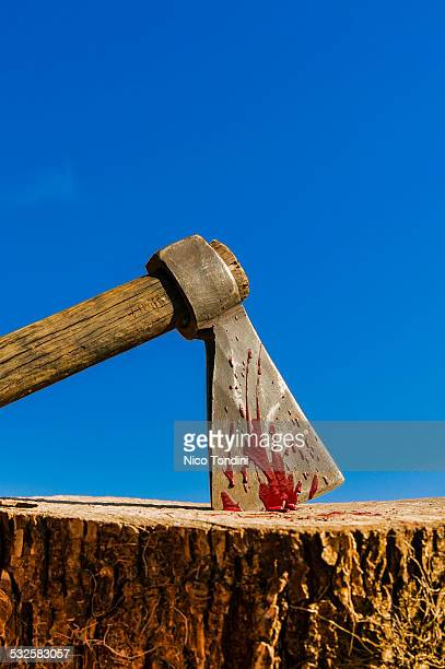 Axe, blood and executioner's wood block