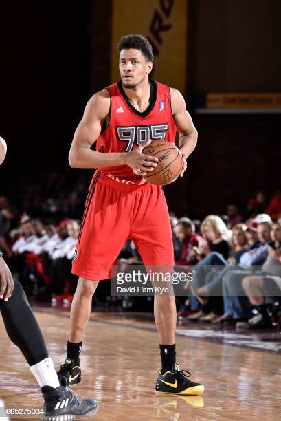 Axel Toupane of the Raptors 905 controls the ball against the Canton Charge at the Canton Memorial Civic Center on April 5 2017 in Canton Ohio NOTE...