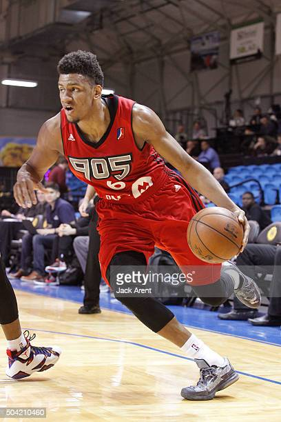 Axel Toupane of the Raptors 905 dribbles the ball against the Rio Grande Valley Vipers during Day Four of the 2016 NBA DLeague Showcase on January 9...