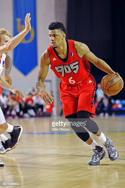 Axel Toupane of the Toronto Raptors 905 dribbles the ball against the Delaware 87ers on January 29 2016 at the Bob Carpenter Center in Newark...