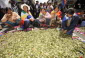 Aymara women chew coca leaves in front of the US embassy to Bolivia during a communal cocachewing day to support the Bolivian government petition to...