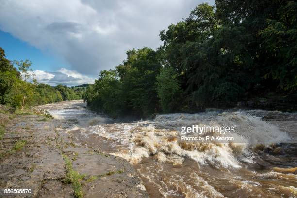 Aysgarth falls in full spate, Wenselydale, North Yorkshire