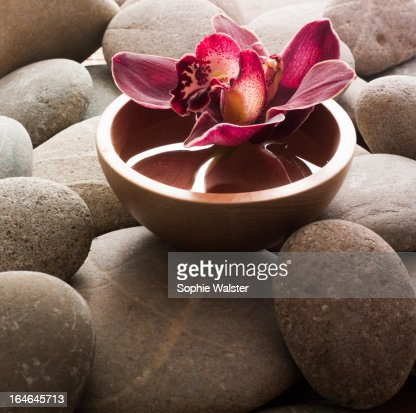 ayurveda symbol : Stock Photo