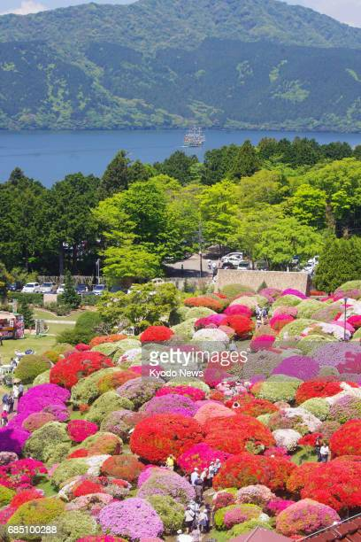 Azaleas are in full bloom in the garden of Hotel de Yama in the hot spring resort town of Hakone Kanagawa Prefecture near Tokyo on May 19 2017 ==Kyodo