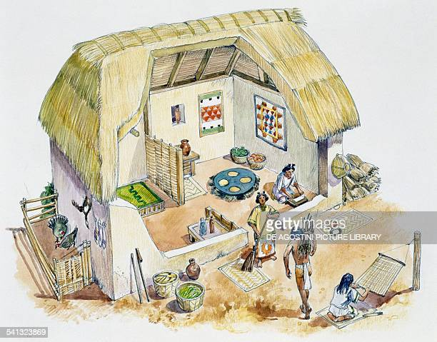 Aztec country house built with mud bricks and roof made from leaves or reeds drawing Aztec 14th16th century
