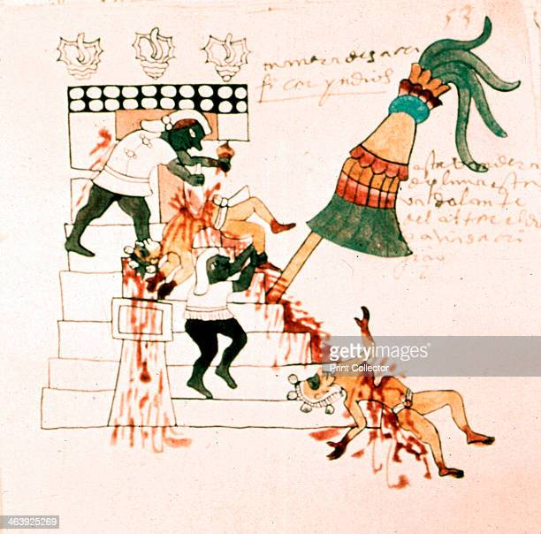 Aztec temple sacrifice From the Codex Magliabicciano Museo de America Madrid